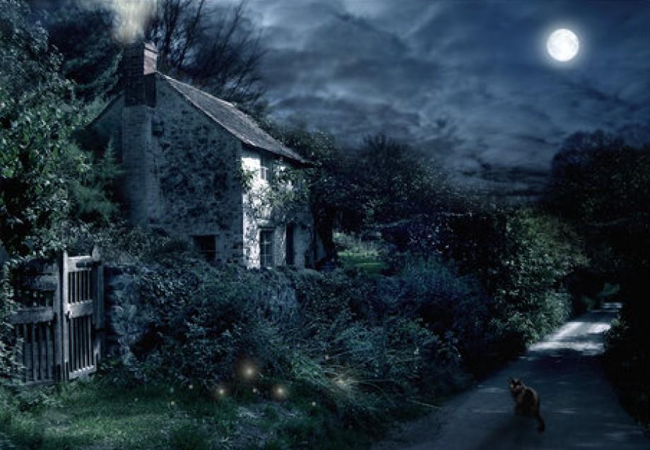 How to create a moon garden l 39 amore e forte come la morte for Under the garden moon